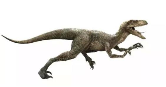 携手《侏罗纪世界2》 柯迪亚克陪你重温童年的历险